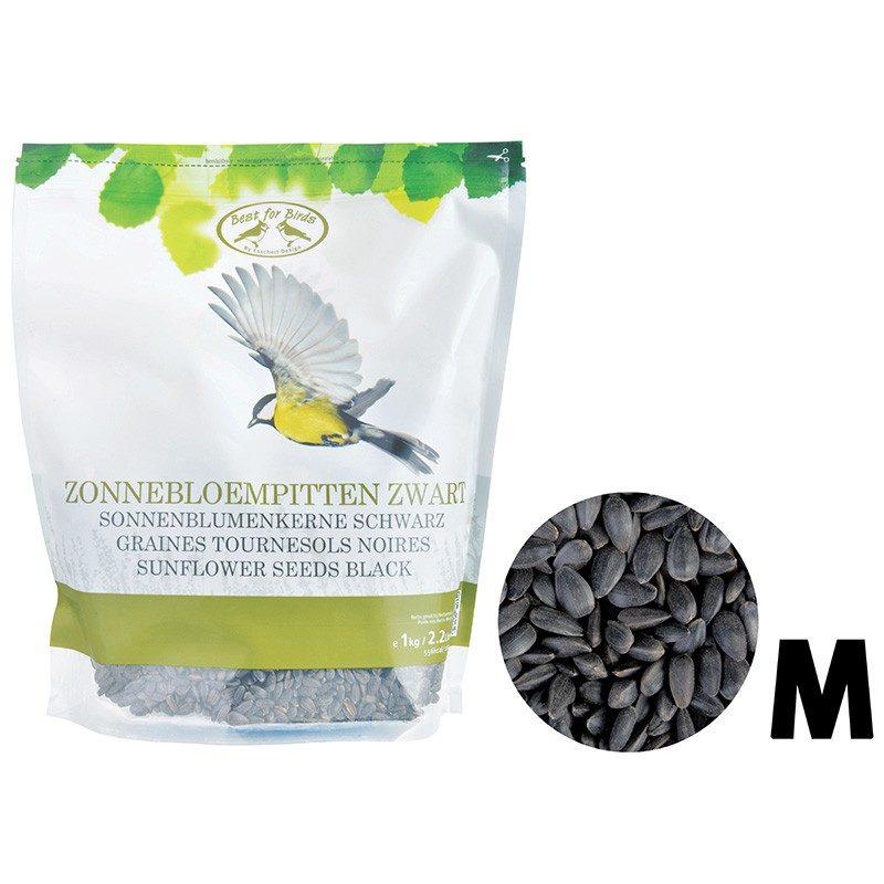 graines tournesol noires oiseaux