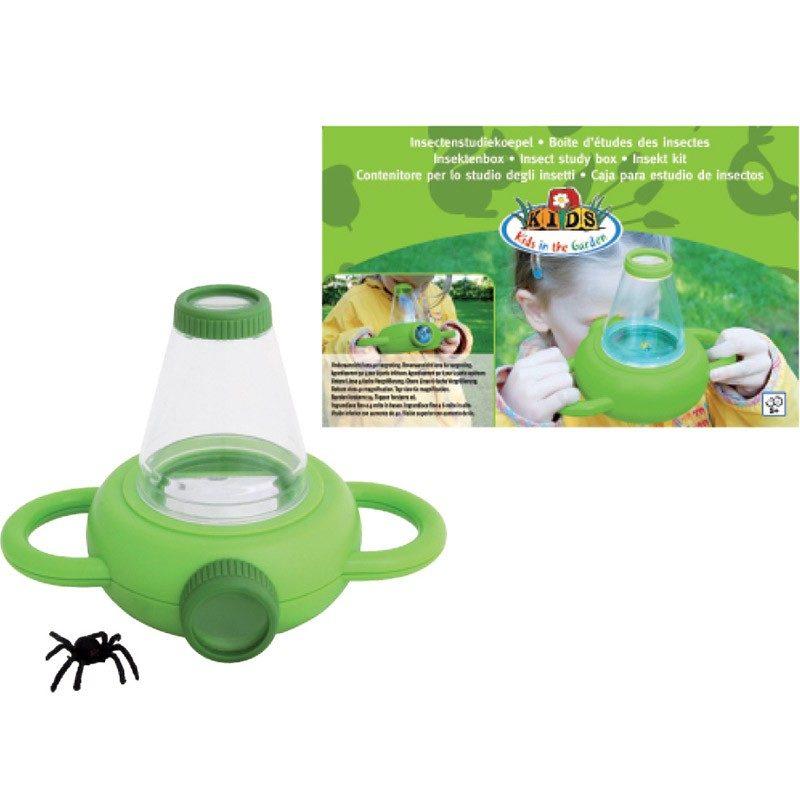 boîte d'étude des insectes