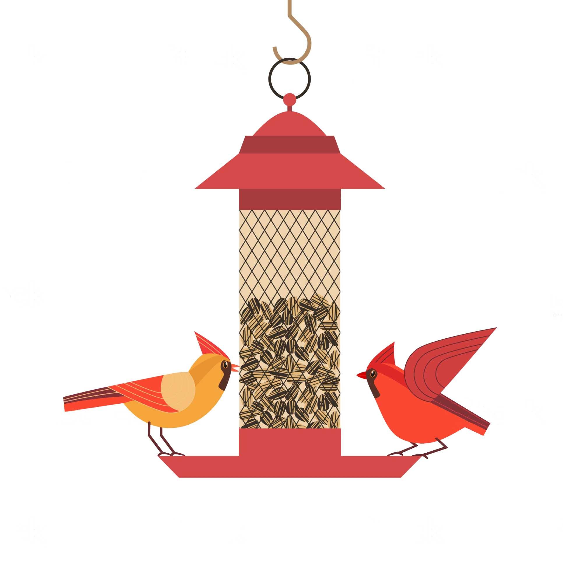 mangeoire tube oiseaux