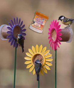 mangeoire pour oiseaux original