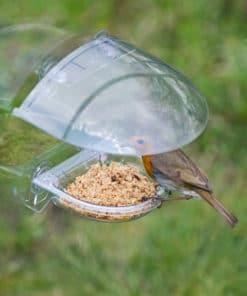 I Love robins toit mangeoire fenetre