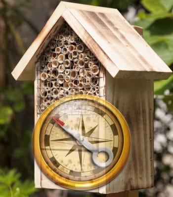 ou installer son hotel à insectes